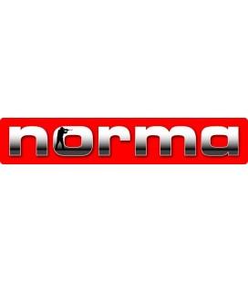 Amunicja kulowa Norma